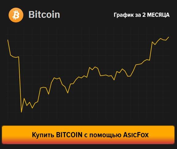 Счетчик Халвинга до Bitcoin 2020